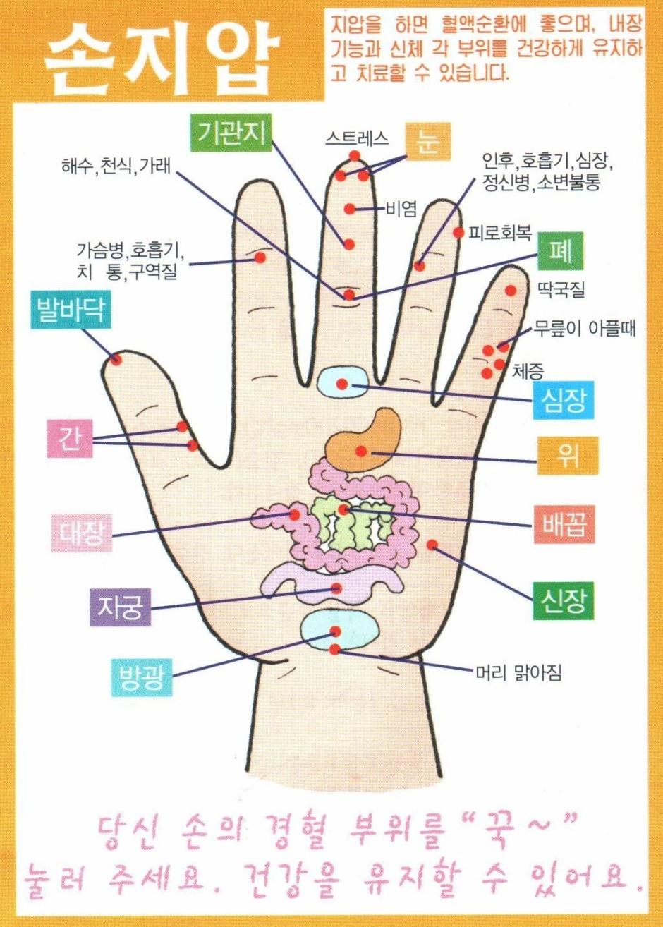 손과 발의 지압 건강 /영세교회